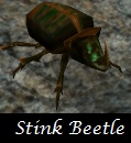 beetle_stink.jpg